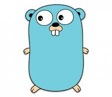 Utilizzare package in Golang